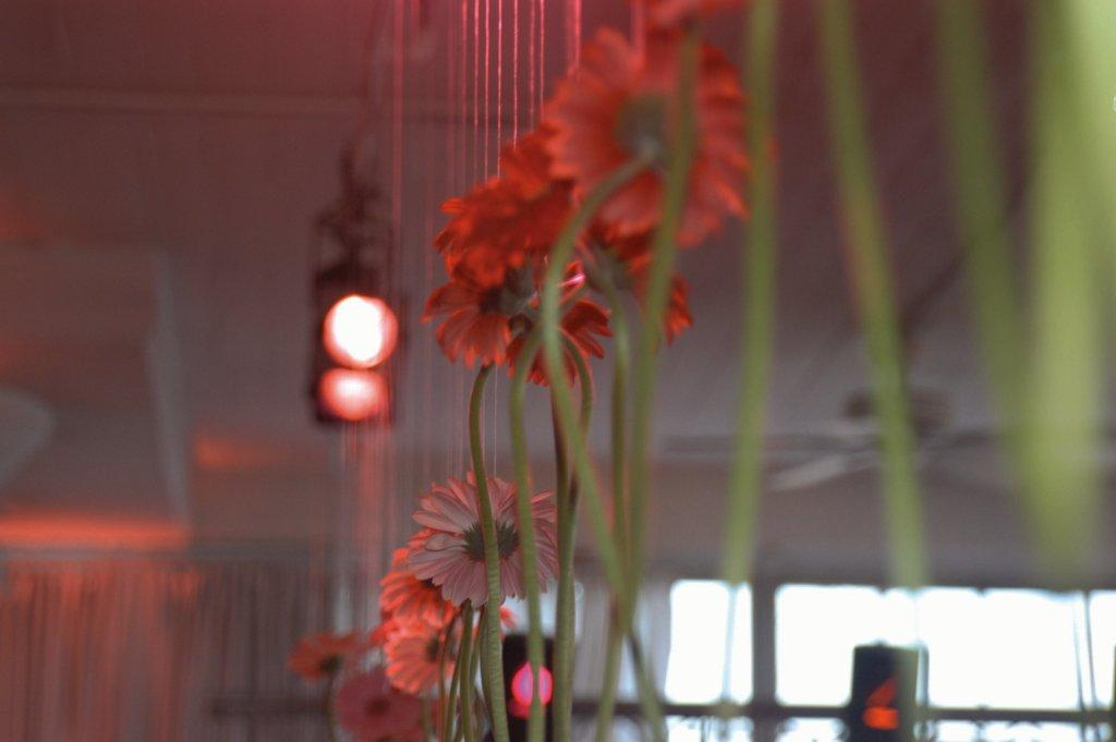 Everything integrates together - from color to lighting to flowers.