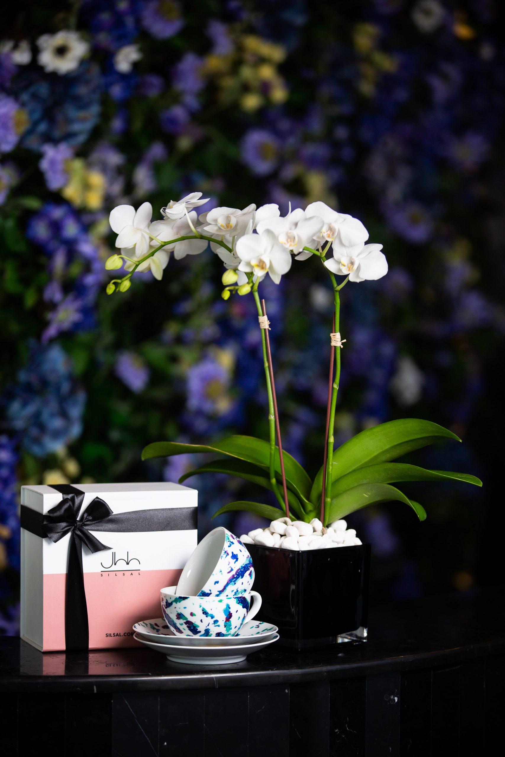 Fairuz Tea Cups Gift Box - ALO Magazine