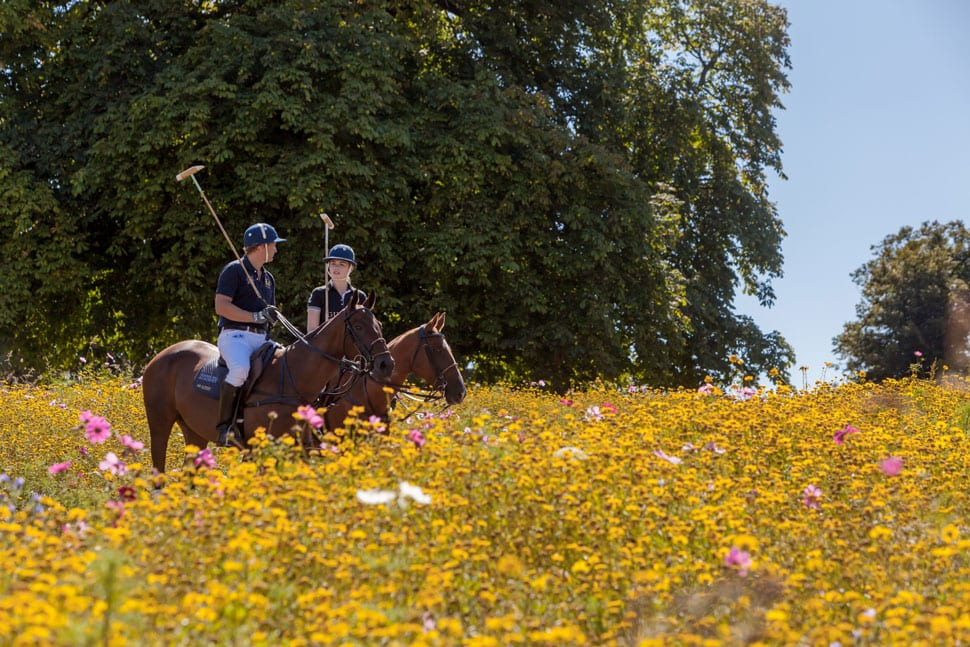 Coworth Park Guards Polo Academy meadow wood chip path-ALO Magazine