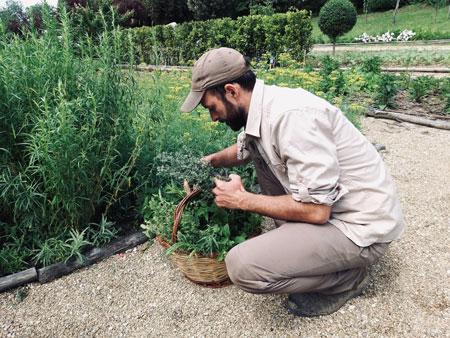ilsalviatino gardening 4 - ALO Magazine