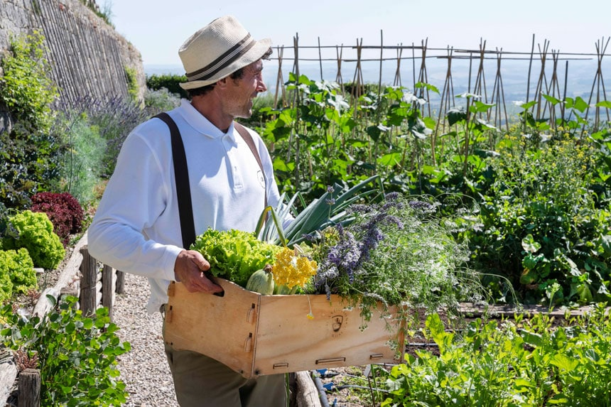 RwCdB Market Gardener - ALO Magazine